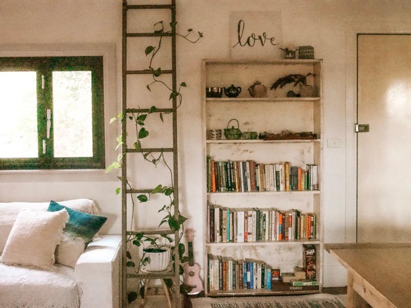downstairsbookcase
